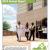 Virginia Organizing 2014 Annual Report