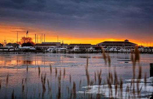 Virginia could do more for Chesapeake Bay cleanup